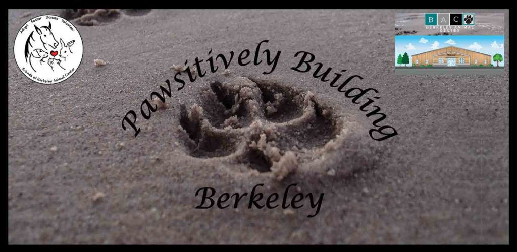 Pawsitively Building Berkeley
